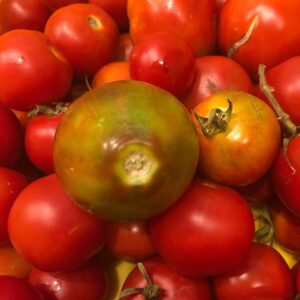"Complimentary Zoom Cooking Class, ""Summer Tomatoes"" @ The Epicurean Connection"